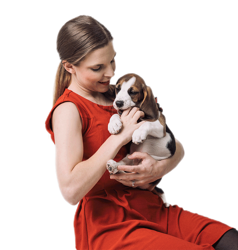 Pets At Home Annual Report Accounts 2018